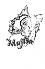 Majlia kennel